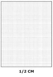 15 Centimeter Grid Paper Vacation Budget