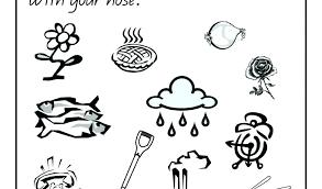 5 Senses Coloring Sheets Preschool 5 Senses Coloring Page Preschool