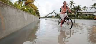 tidal flooding and sea level rise in the florida keys 2016 union of concerned scientists