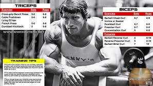 Arnold Exercise Chart Pin On Good Thoughts