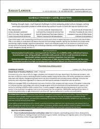 C Level Resume Samples Lovely Executive Resume Examples C Level Executive Resume Example 14