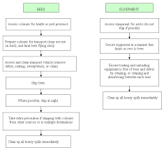 Honey Processing Flow Chart Honey Bee Operating Steps Honey Bee Producer Guide To The