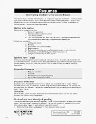 Typing A Resume New Resume Unique My First Resume Template My First