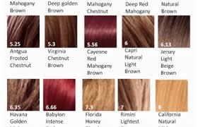 Shades Medium Brown Hair Color Chart Medium Hair Styles