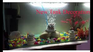 Aquarium Design For Flowerhorn My New Tank Decoration For Flowerhorn Youtube