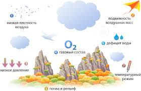 Наземно воздушная среда обитания Естествознание
