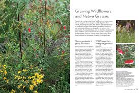 Small Picture Booktopia Birdscaping Australian Gardens Using Native Plants to