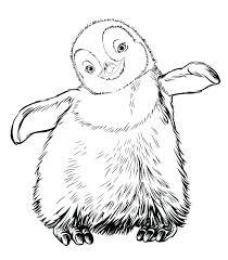 Penguin Sliding Coloring Page Dr Schulz
