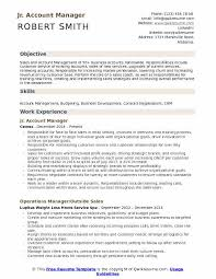 Account Manager Resume Stunning Account Manager Resume Samples QwikResume