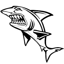 Great White Shark Outline Drawing At Getdrawings Com Free