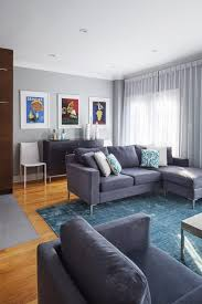 grey living room with a solid teal rug