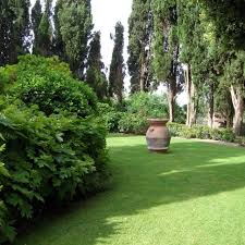 Small Picture 17 best Tuscan Garden images on Pinterest Tuscan garden Italian