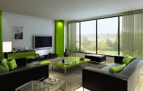 Living Room:Modern Living Rooms Decor In Green And Black Color Decor Also  Grey Fur
