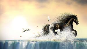 running horse in water with bird paintings poster