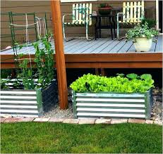 galvanized steel raised garden bed best wood for beautiful metal beds images diy s galvanized raised bed