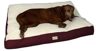 Extra Dog Beds Cheap dog beds reviews