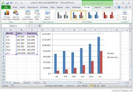 Excel Graphs And Charts 2010 Ms Excel 2010 How To Create A Column Chart