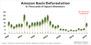 Chart Of The Day The Amazon Is Burning But Not Everyone