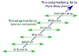 Adaptation Wikipedia