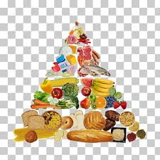 435 Food Pyramid Png Cliparts For Free Download Uihere