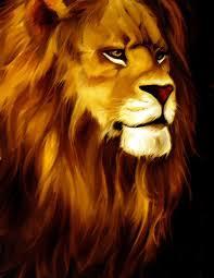 lion drawing color. Interesting Lion Lion Drawing Color  Google Search And Lion Drawing Color