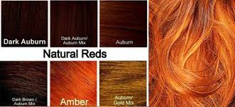 Ginger Hair Color Dye Best On Dark Skin Chart How To Use