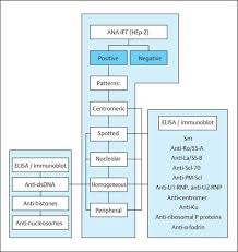 Autoantibodies Autoantibodies And Antineural Antibodies
