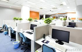 good office desks. Good Office Plants For Cubicle Workers Smaller That Can Be Set Up On A Desk Are Best No Sunlight Desks E