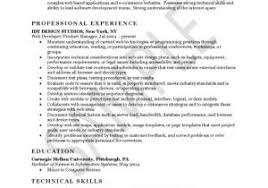 Sample Resume For Web Designer Experience Experience Resume Sample
