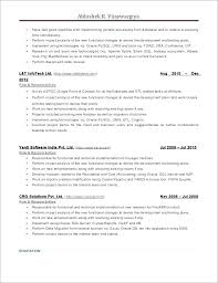 Developer Resume Examples Stunning Resume Examples 48 Pl Programmer Art Exhibition Oracle Developer