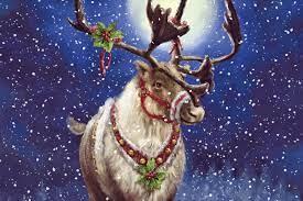 Christmas Deer Wallpapers - Top Free ...