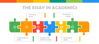 what is an essay blog types of essays