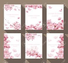 Cherry Blossom Backdrop Cherry Blossom Frame And Border Vector Floral Pattern Background