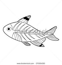 Small Picture X Ray Tetra Stock Images Royalty Free Images Vectors Shutterstock