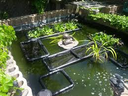 floating pond plant islands