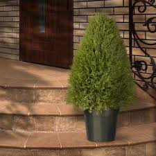 upright juniper artificial tree in green round growers pot