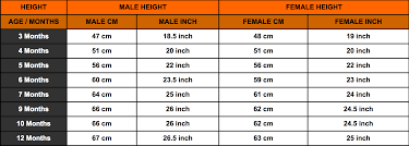Rottweiler Size And Weight Chart Rottweiler Growth Chart Rottweiler Height Chart Rottweiler