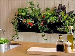 indoor gardening supplies. Indoor Garden Supply Unique Where Can I Gardening Supplies .