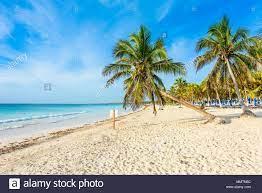 Paradise Beach auch genannt Playa Paraiso bei Sonnenaufgang - Schöne und  tropische karibische Küste von Tulum, Quintana Roo, Riviera Maya, Mexiko  Stockfotografie - Alamy