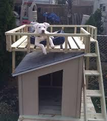 Creative Dog Houses Dog House Designs For Large Dog Homestylediarycom