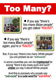 posters and flyers white genocide project you can also get stickers banners and already printed flyers delivered to you from our friends fightwhitegenocide com info shop