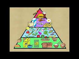 Food Pyramid Project Indian Food Chart For School Project Bedowntowndaytona Com