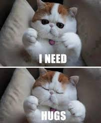 I need hugs. Sad, lonely, hungover, self inflicted generalness ... via Relatably.com