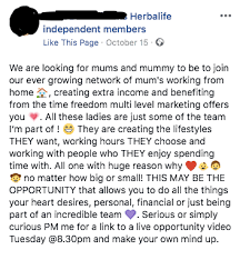 How Much Money Can You Really Make Working For Mlm Herbalife