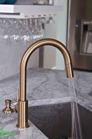 gold kitchen faucet. Delta Gold Kitchen Faucet Spray I