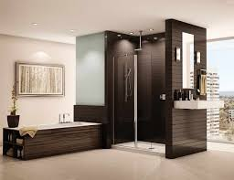 glass block doorless shower designs