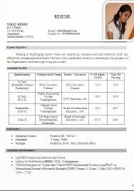 Free Professional CV Templates   Student Companion SA