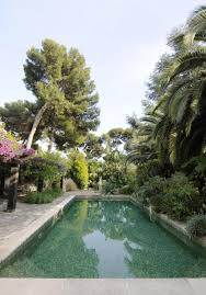 Pool Portrait Surrounded By Greenery