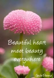 Beauty Comes From The Heart Quotes Best Of Beautiful Heart Meet Beauty Everywhere Bell Of Peace