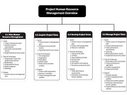 the process of identifying and documenting project roles  the process of identifying and documenting project roles responsibilities required skills reporting relationships